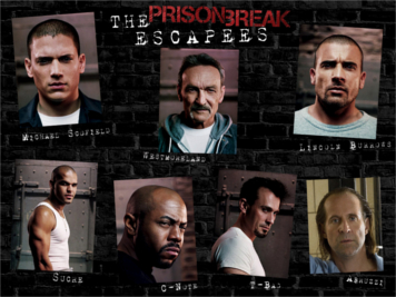 series para ver prision break